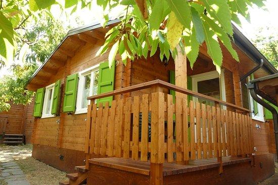 Campeggio Parco dei Castagni: chalet