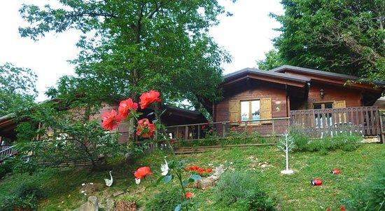 Campeggio Parco dei Castagni : Chalet