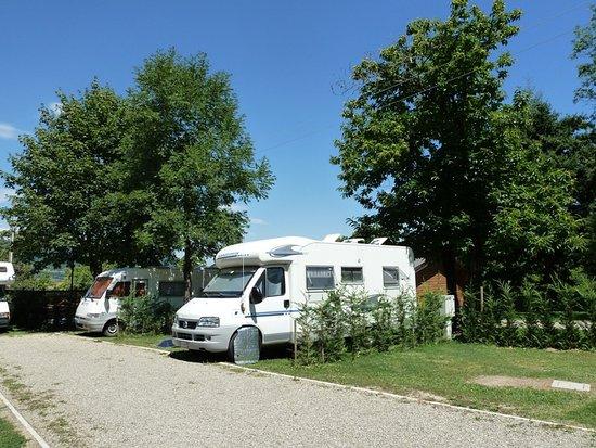 Campeggio Parco dei Castagni : Piazzole camper
