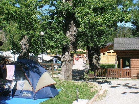 Campeggio Parco dei Castagni : Piazzole tende
