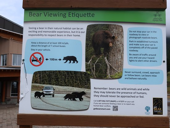 Whistler Olympic Park: An informative sign about bears.