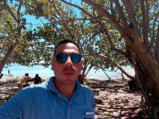 Playa Larga: Museo