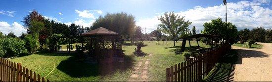 La selva ristoro: Panoramica parco