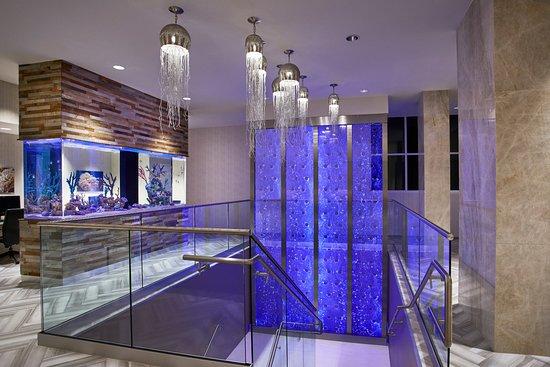 Residence Inn by Marriott Ocean City Fotografie