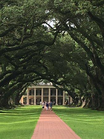 Oak Alley Plantation: Impressive