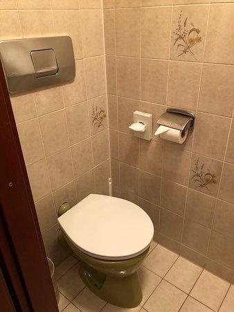 Hotel Garni Schlossblick: Toilet and Small Shower