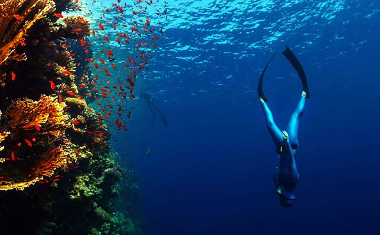 Caldera Diving Center: free diving courses