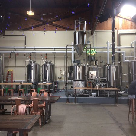 锚牌啤酒酿造厂照片
