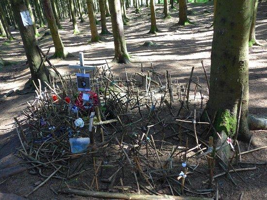 Bois de la Paix : Foxhole