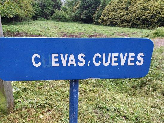 Cuevona de Cuevas del Agua: CUEVES