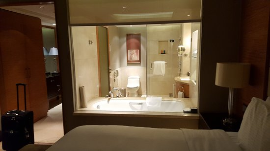 โรงแรมพูลแมน เป่ยจิง เวสท์ แวนดา: See through bathroom