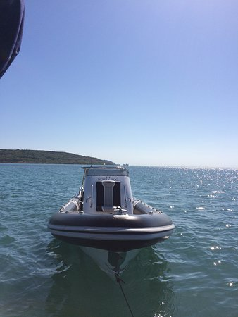 Norty Too Charter: 'Norty Too' Fairline Squadron 58