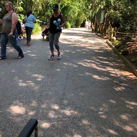 Skip the Line: Cincinnati Zoo and Botanical Garden Admission Ticket ภาพถ่าย