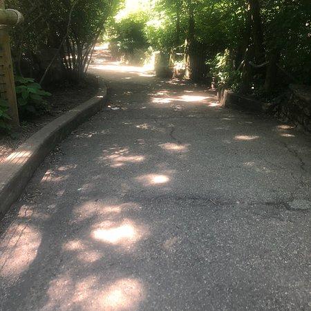Entrée générale au zoo et jardin botanique de Cincinnati Photo
