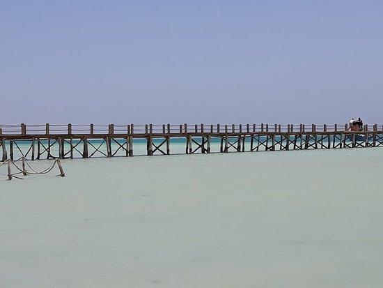 Sinai Excursions照片