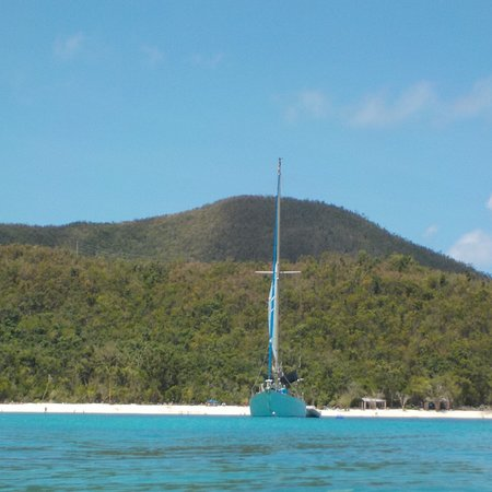 Morningstar Sailing and Power Charters: Fantastic day with all the Roses