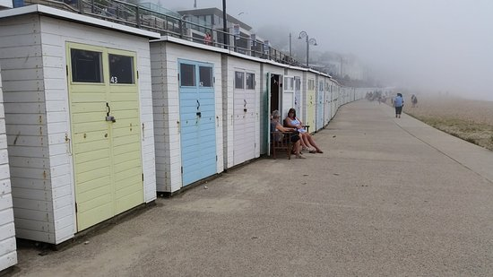 Cobb Beach: Sheds for hire