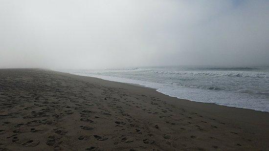 Foto de Oxnard State Beach and Park