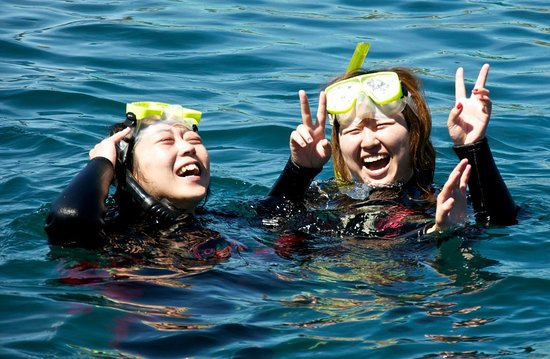 E-Ko Tours: Happy swimmers after seeing dolphins