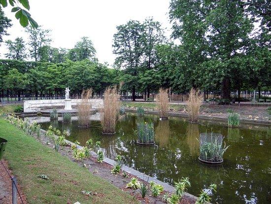 杜乐丽花园照片