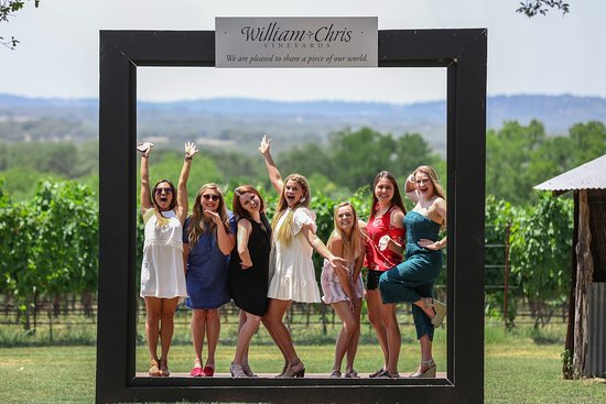 Absolute Charm Wine Tours: too much fun!!! :)