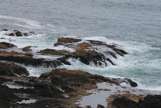 Cape Perpetua Scenic Area: Beautiful coast line