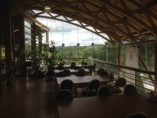 Welsh Wildlife Centre照片