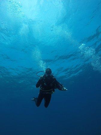 Ma plongée avec Warnakali