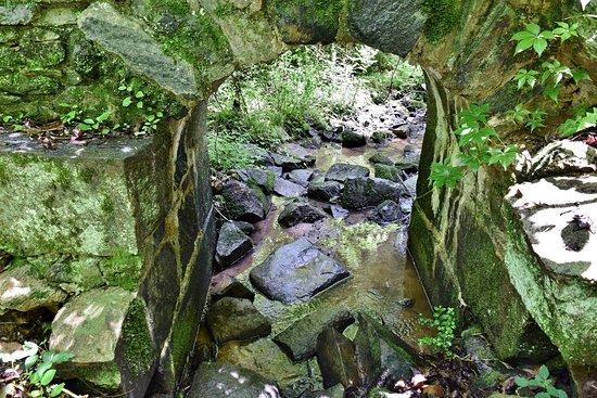 Landsford Canal State Park: Culvert