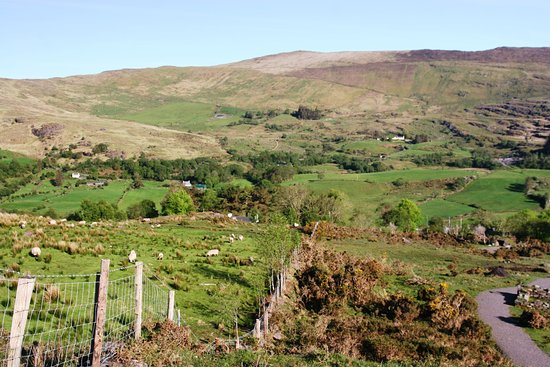 Molly Gallivan's Cottage & Traditional Farm: Veiw at the top of the walk.