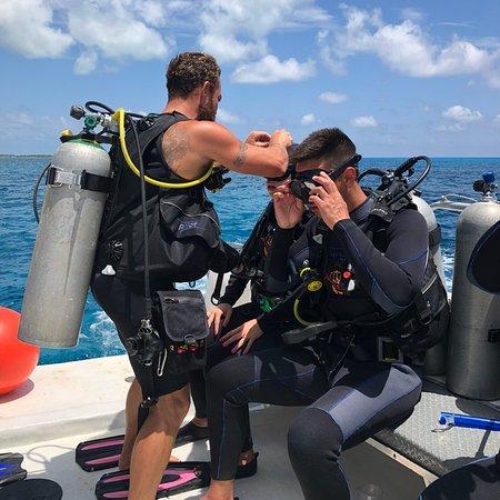 Dressel Divers ภาพถ่าย
