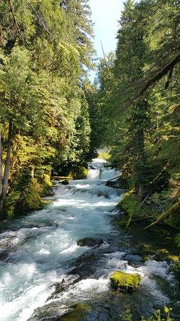 Sahalie and Koosah Falls: River