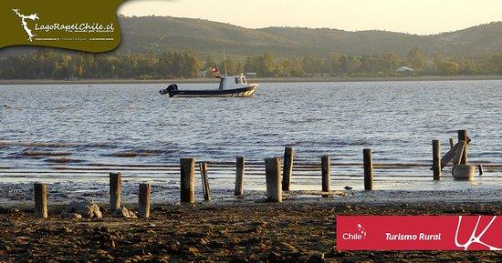 Las Cabras, ชิลี: Lago Rapel