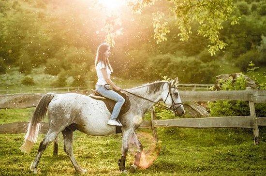 Tour a cavalo pelas vinhas e belas...