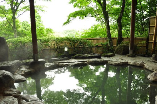 Relaxing Hot Spring Half Day Tour in...
