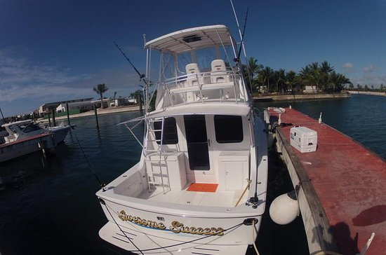 Bertram 33ft  Fishing  charter