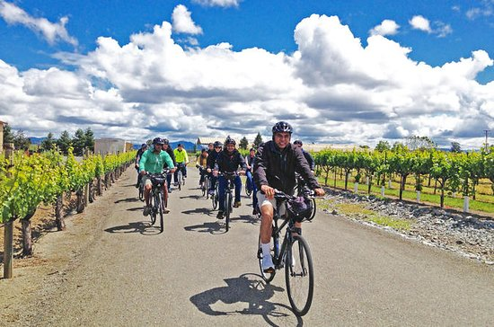 Sonoma Wine Country Tour in bicicletta