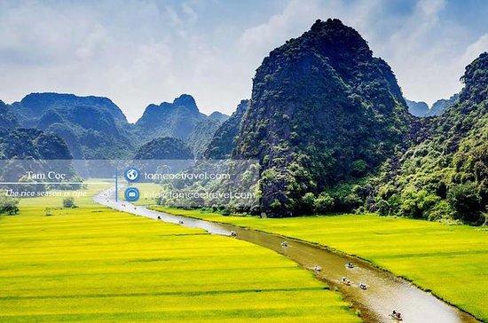 ラグジュアリーHoa Lu - Tam Coc - Mua Cave 1日 -…