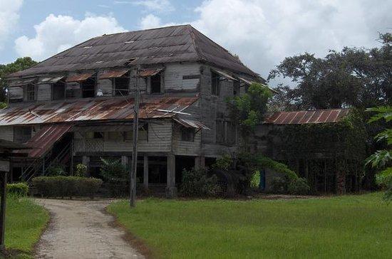 Commewijne Plantation