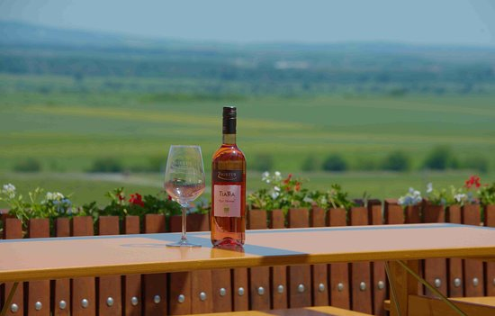 Zagreus Winery: Nice picture.