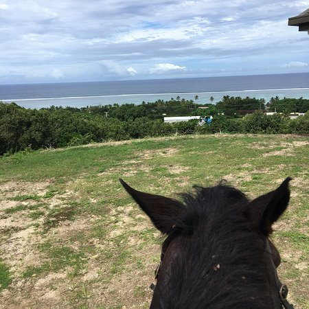Foto de Maui Bay Horse Riding Adventure