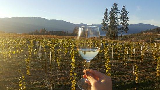 Garden Bistro at O'Rourke's Peak Cellars: Vineyard-side tasting