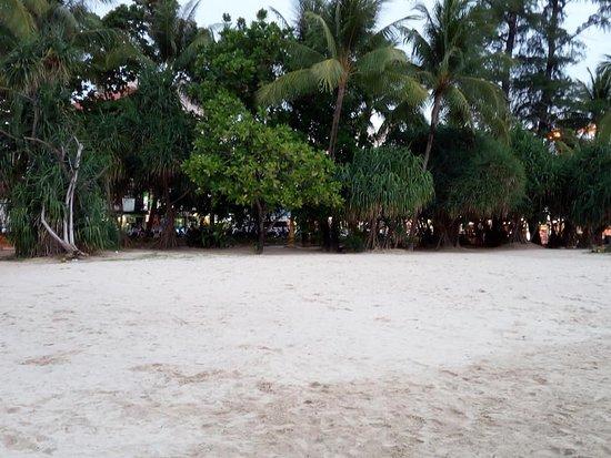 芭东海滩照片