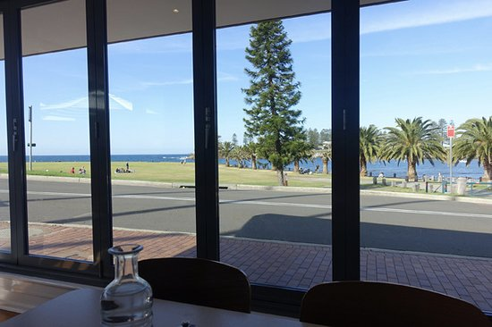 Penny Whistlers Cafe: View