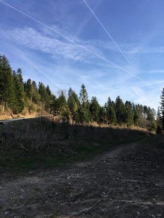 Boege, France: montée, côté Lucinges