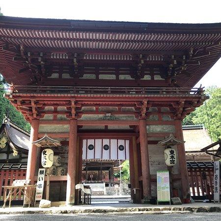 Hiyoshi Taisha照片