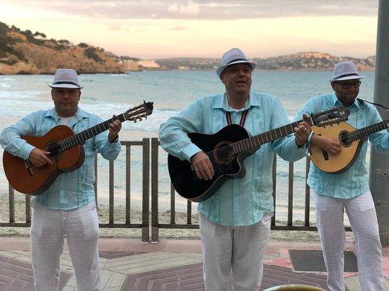 Tora: Trio Tramuntana.