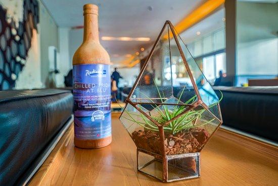 Radisson Blu Gautrain Hotel: Radisson Blu Gautrain - Glass terrariums
