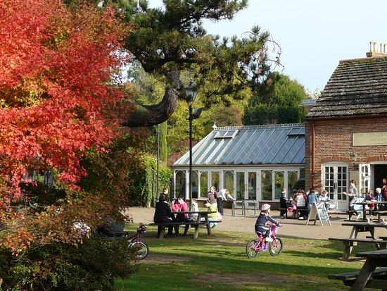 Horsham Park : The Conservatory Cafe