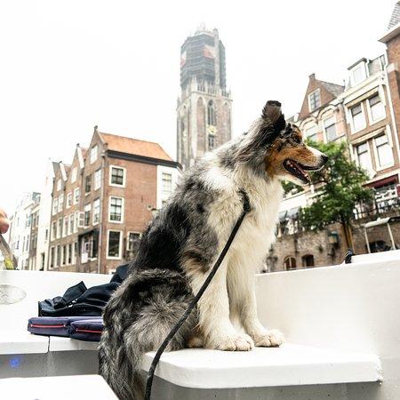 Sloepdelen Boat Rental: VIP on board at the Dom Utrecht